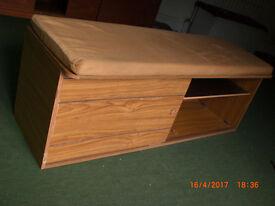 Bench/cabinet with storage under