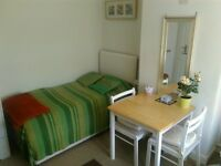 lovely single room with own private bathroom in a house share with male professional let mon-friday