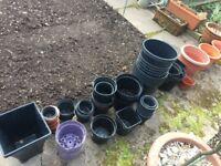 Garden plant pots for sale