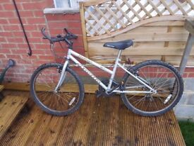 Ladies/Teenagers Apollo Bicycle in good working condition