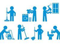 Mother's helper / Household helper Needed