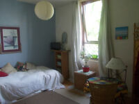 large bedsit room with all amenities to rent (share bathroom and kitchen) with one person