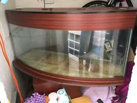 Fish tank 4ft bow front with Trickle Filter media and return pump