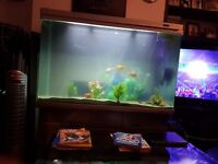 60 Litre Fish Tank with Pump, Filter, lights and Gravel and Stand + Separate Stand