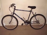"Raleigh Amazon 21"" Mountain Bike (will deliver)"