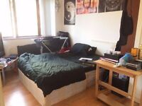 Double Room, nice flatmates, VIEW TODAY 3.30PM