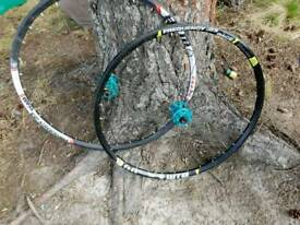 Frequency Mountain Bike wheels