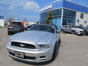 2013 Ford Mustang GT 5.0L, Winter mags, Very Clean
