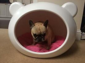 Dog bed/cave