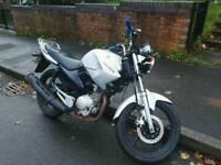 2010 Yamaha YBR 125 125cc low mileage learner legal bike motorcycle motorbike road £1200
