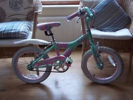 Girls Raleigh Green/Pink Bike