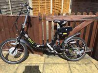 Viking E-go Electric Bike