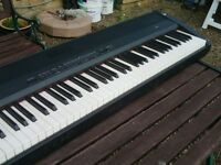 Korg Sp300 Poffessional Keyboard