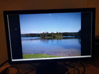 "BenQ GL2450 - perfect condition, 24"" monitor, mega bargain"