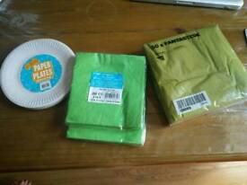 Pincic items, napkins and paper plates