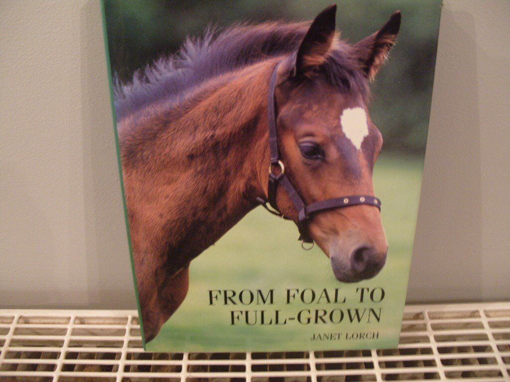 From Foul to Full Grown (horse book)