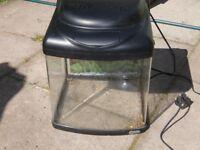 panoramic effect fish tank / aquarium 25 Litres and dual colour lamp