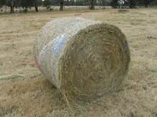 HAY BALES and BAGS of HAY Ringwood Maroondah Area Preview