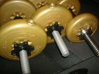 3 York Dumbbells
