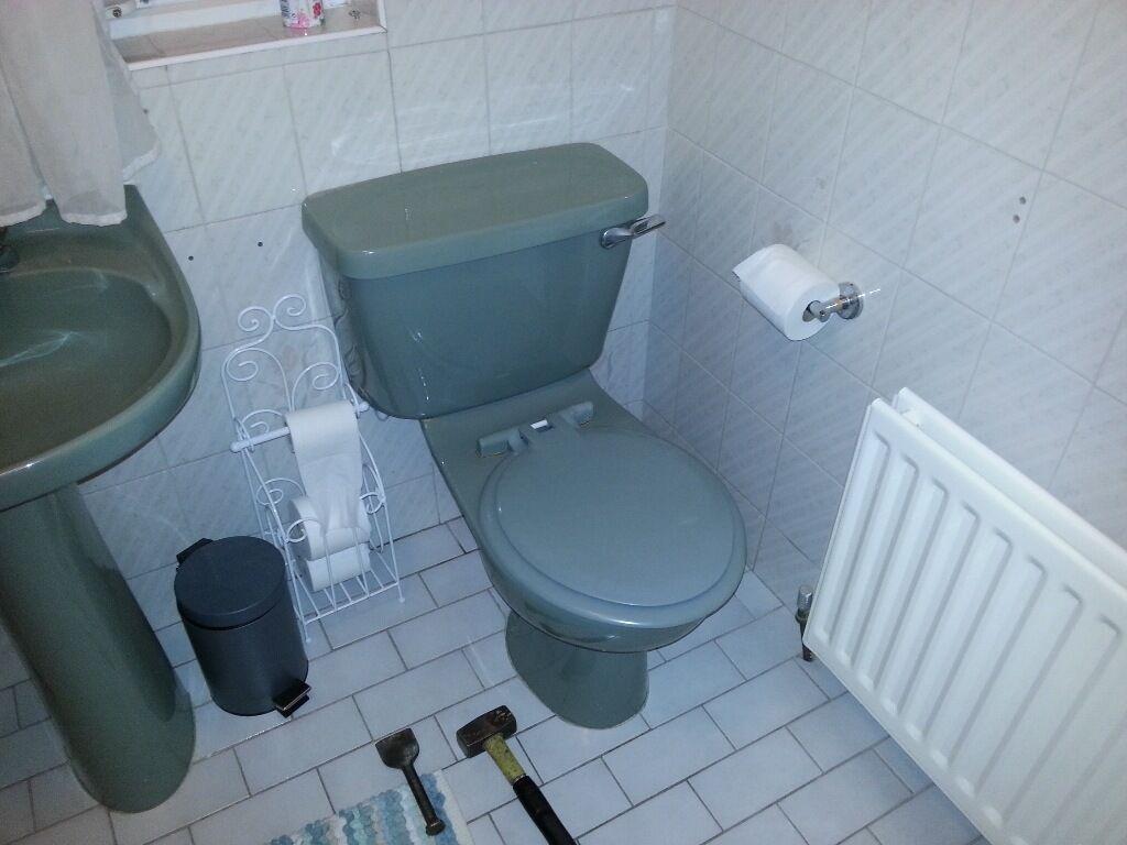 Armitage shanks bathroom sinks - Armitage Shanks Wild Sage Bathroom Suite Toilet Sink Bath Green Avacado