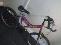 Free girls kids bike pick up