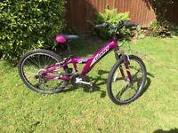 Girl's mountain bike (Giant 250 MTX)