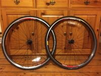 DT Swiss 2.0 ETRTO 622 x 14 road bike wheels. Plus Espoir Sport Blackbelt 700x23c tyres.