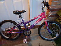 Girls Bike would suit 6-9 yrs old - Excellent condition