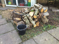 Logs for woodburner or open fire