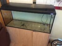Tropical Fish Tank (4ft) and Accessories.