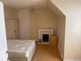 Massive one bed flat in green lane part dss welcome