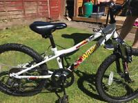 Boys 16'' Apollo Bike