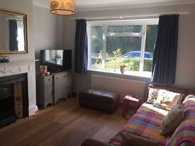 Lovely room to rent in beautiful flat in quiet cup-de-sac in East Finchley, short term let