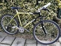 Men's carrera mountain bike