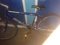 bike for 20 pound
