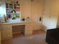 En-suite single room for rent - £650 pmc + deposit £325 (2 weeks)