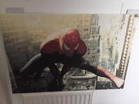 Spider-Man Canvas/picture/wall art