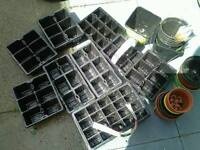 Mix lot of trays