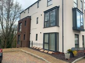 1 bedroom flat in Monmouth House, Monmouth, NP25 (1 bed) (#1106121)