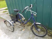 PASHLEY PICADOR TRIKE TRICYCLE