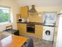 3 bed fully furnished flat for students and professionals