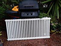 Acova 2 column radiator