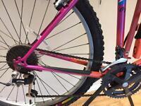 21 speed mountain bike