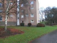 2 bedroom flat in Yarrow Terrace, Dundee,