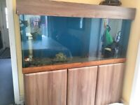 5ft fish tank for sale £150 ono for sale  Portsmouth, Hampshire