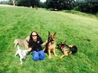 Reliable Dog Walker, Dog Training, Dog Boarding and Doggy day care services in West London