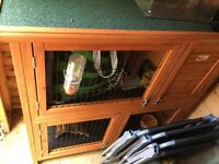 Guinea pig/ small rabbit hutch for sale!