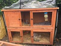 Rabbit hutch, carrier and accessories.