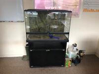Exo Terra Vivarium 90x45x60cm + Cabinet, Ultimate Mistking System & Heatmat
