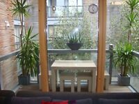 Short walk of HOXTON Square modern TWO DOUBLE bedroom TWO BATHROOM apartment